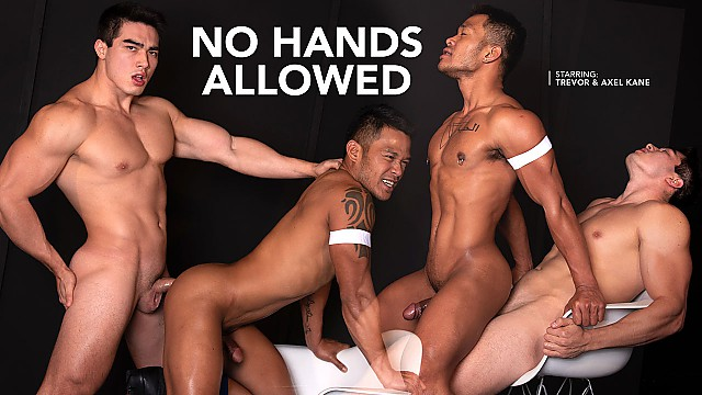 No Hands Allowed