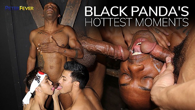 Black Panda's Hottest Moments